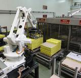 Depalletising & Palletising Robot