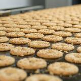 Biscuits lines