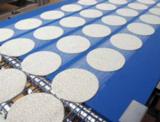 HACCP conveyor and process belts