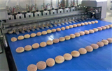 Injector / Filling machines