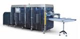 Form Fill Seal Machinery QT 1010