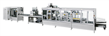 Blister packaging machine BPC 25HBPC 35H