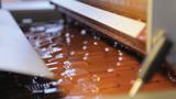 Chocolate enrobing lines